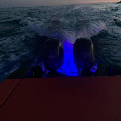 Ribco Rentalboat 00005